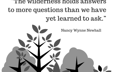 """The wilderness holds answers to more (1)"