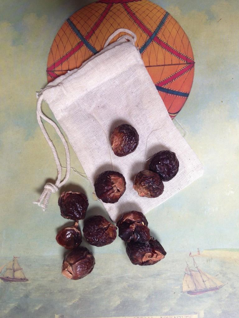 laundry soapnuts